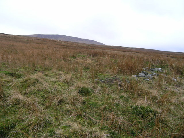 View towards Little Whernside from High Pasture