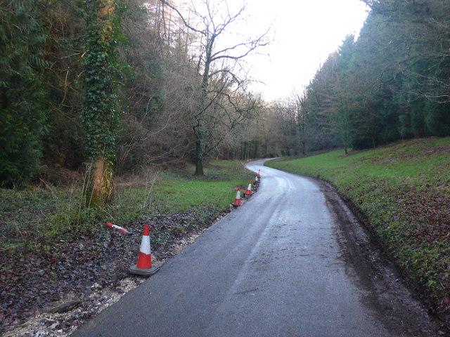 Road through Wraxhall Woods