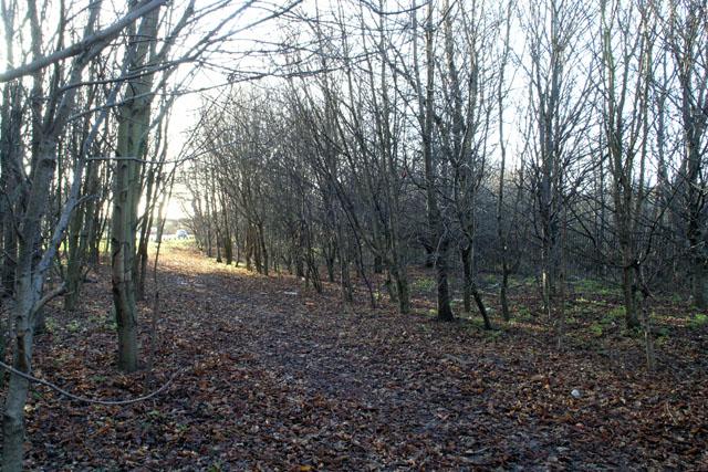 Bridle Path - Long Eaton