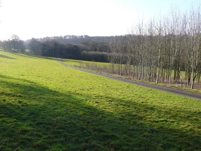 Farm track leading to Hazel Farm