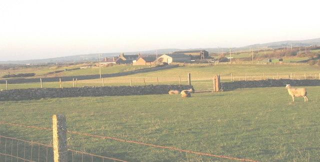 Rhydolion Farm from the Towyn road