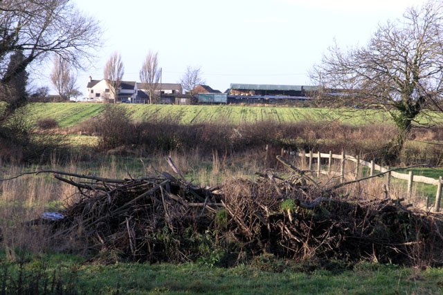 Wood pile and Cottage Farm