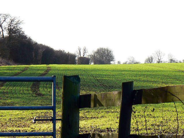 Farmland near Lower Chedworth