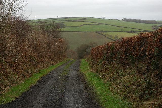 Oxham Lane, Romansleigh