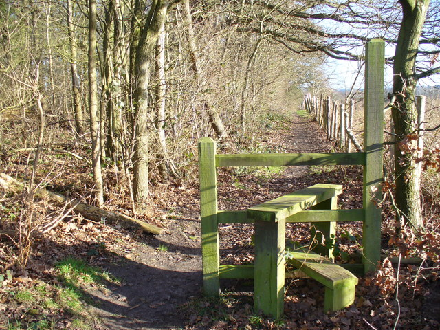 Footpath to Pyrford Green