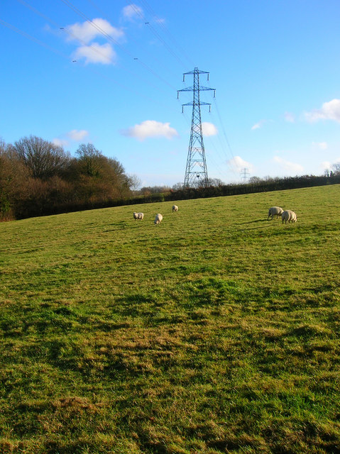 Pylons and Sheep