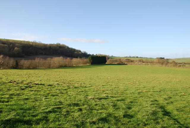 Woodminton Farm field