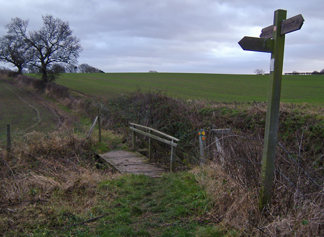 Footpath T-junction