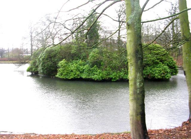 Cottingley Manor Lake - Cottingley New Road