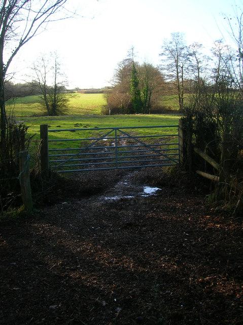 Footpath Back to Prinkle Lane