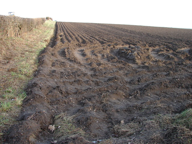 Ploughed Field on Sheep Cote Hill