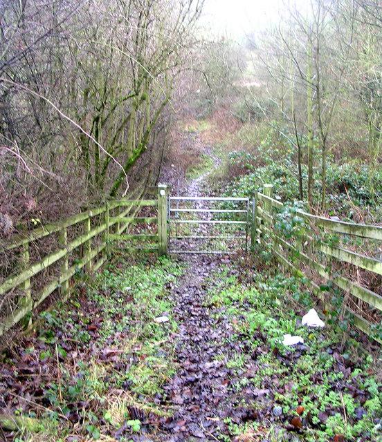 Bridle Path - Cottingley Moor Road