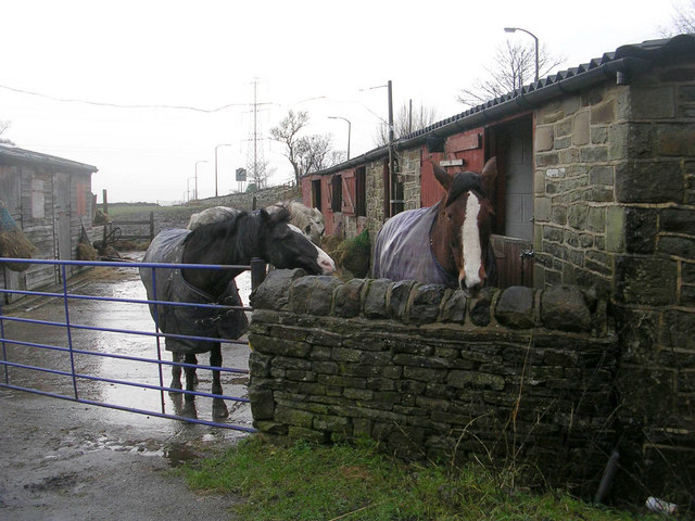 Good Companions - Cottingley Moor Road