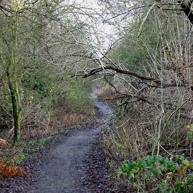Kingswinford Railway Walk, West Midlands
