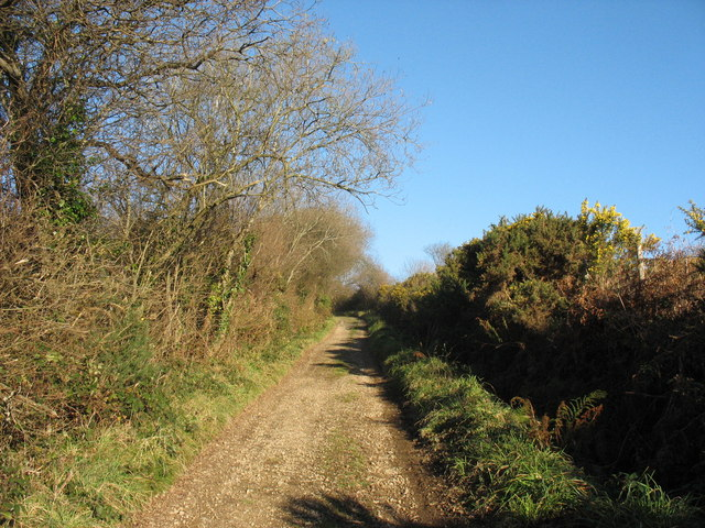 View upslope along the Oerddwr farm track