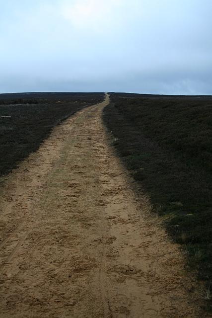 Shooters Track across Urra Moor.