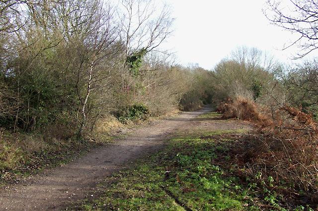 South Staffordshire Railway Walk, near Kingswinford