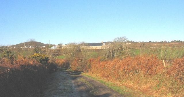 Farm road to Fferm y Muriau