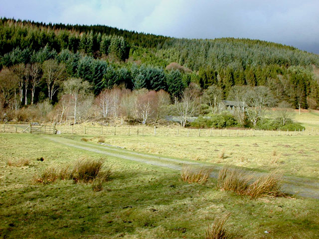 Hafod remains