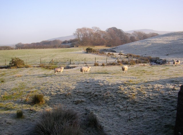 Frosty field, near Conder Mill,Quernmore