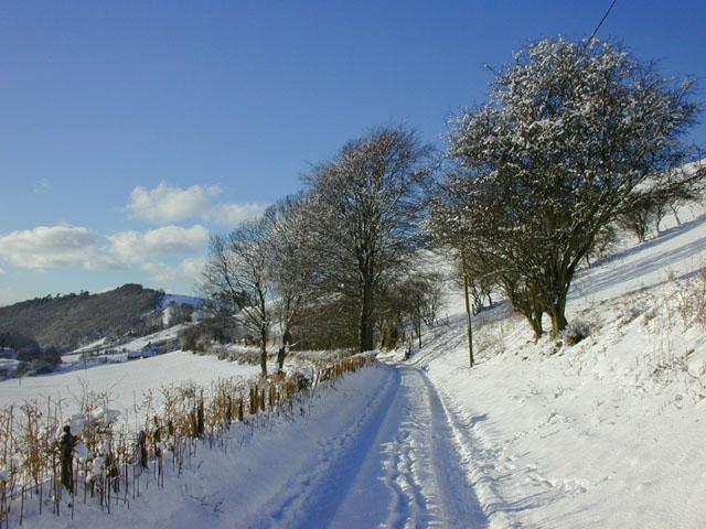 Lane from Cennant farm
