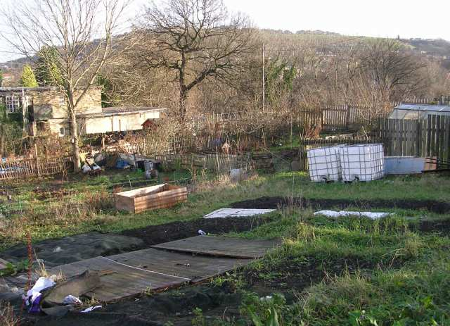 Allotments - Otley Road