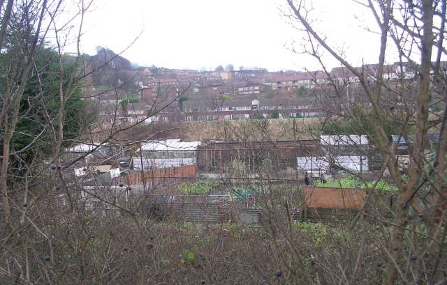 Allotments - Canal Road