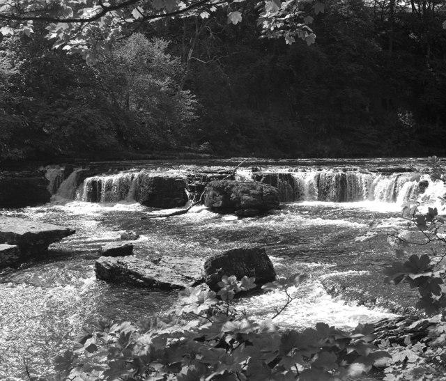 Aysgarth Upper Falls, Wensleydale