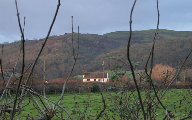 Yew Tree Farm