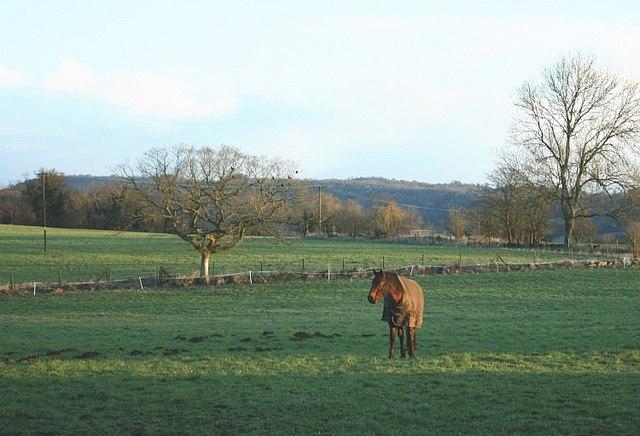 2007 : Near Limpley Stoke