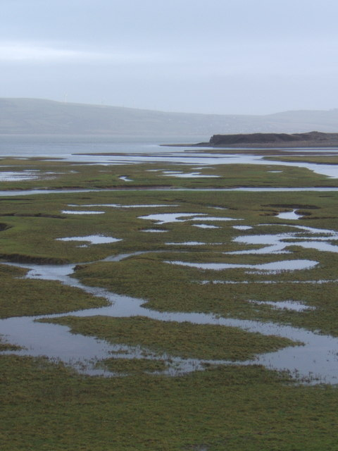 Saltmarsh and Duddon Estuary near Millom