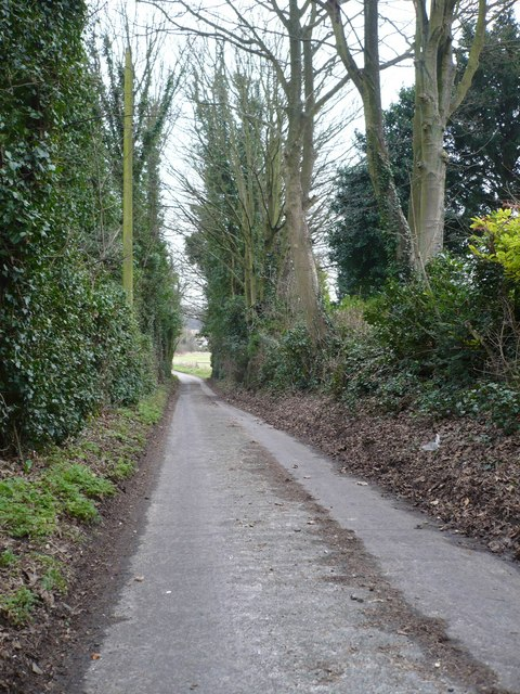 A lane leading to Coldred Road