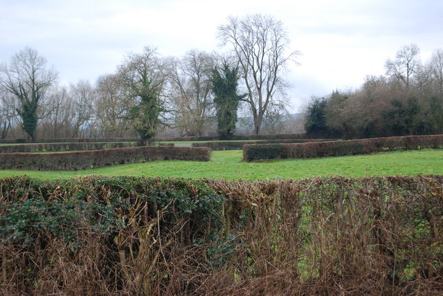 Neatly trimmed hedges around the grazings