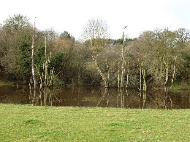 Pond formed in gypsum depression