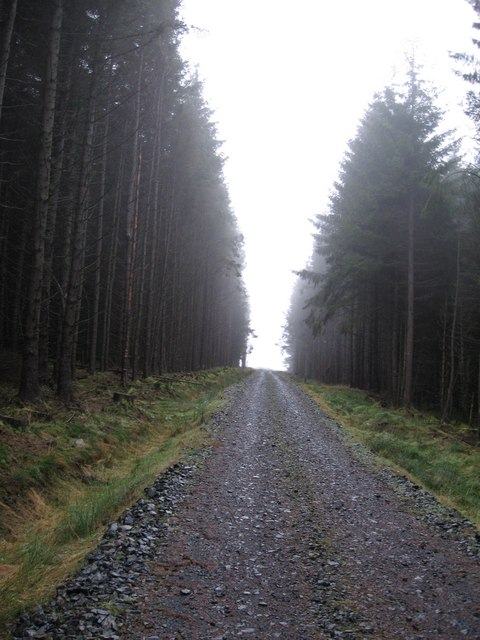 Forestry track in Redesdale Forest