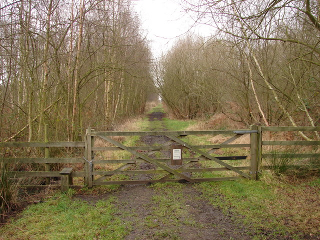 Start of the Decoy Trail
