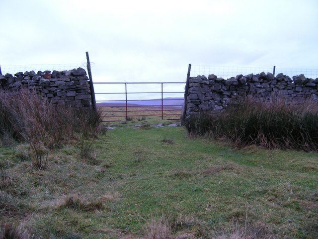 Gate in drystone wall on flank of Stake Fell