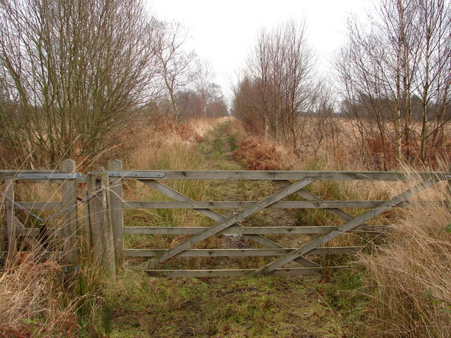 Gate on the Decoy Trail