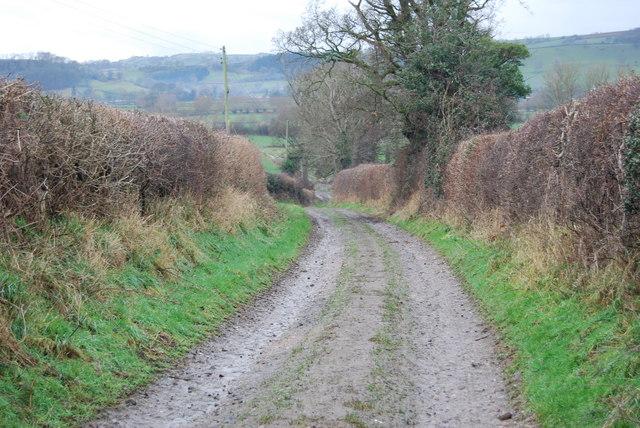Farm track leading to grazings by Afon Hafren