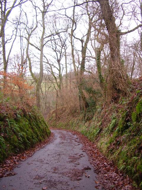 """Sunken road or """"hollow way"""""""