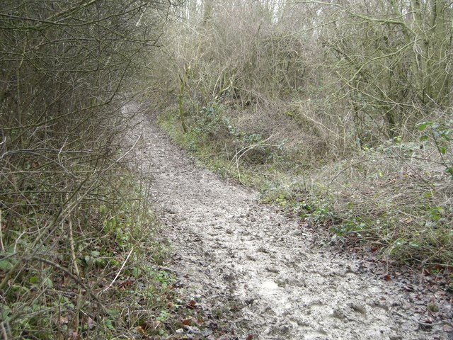 Pyecombe, Nore track and junction