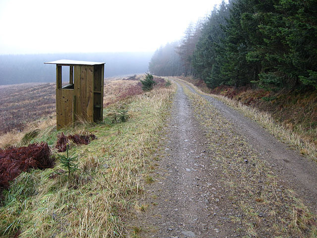 Forestry road and observation hut at Wester Alemoor