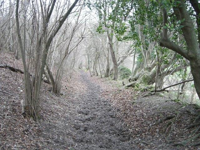Pyecombe, Wolstonbury Hill bridleway
