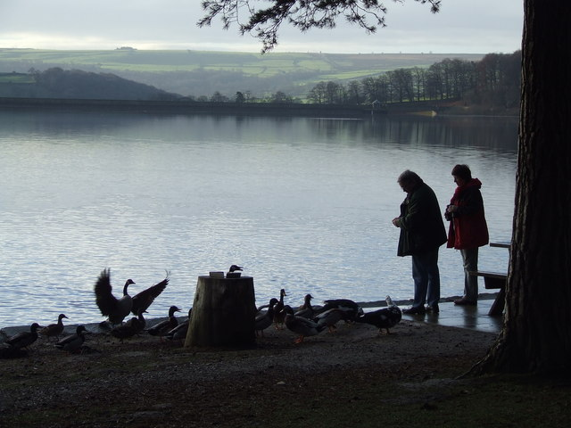 Picnic (and bird feeding) Area at Stack Point (Swinsty Reservoir)