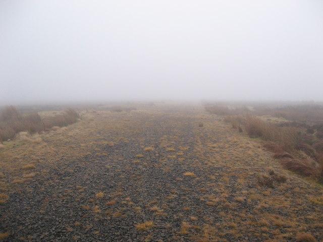 Track on Emblehope Moor