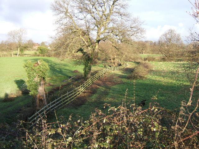 Maintenance work on field boundary