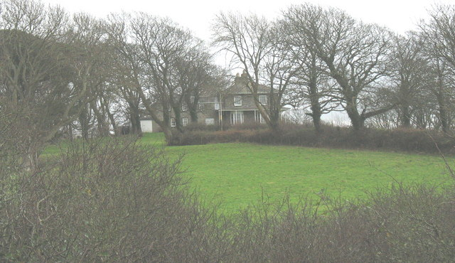 Trees in the parkland around Bryn Teg