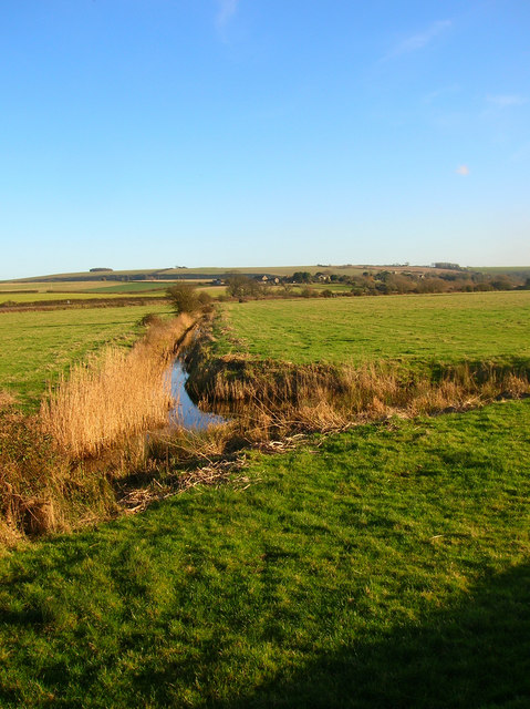 Water Meadows, Arun Valley