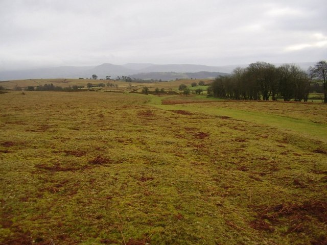 Well managed common grazing land