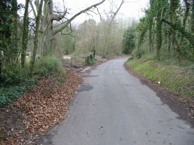 View along a minor road across St Alban's Downs